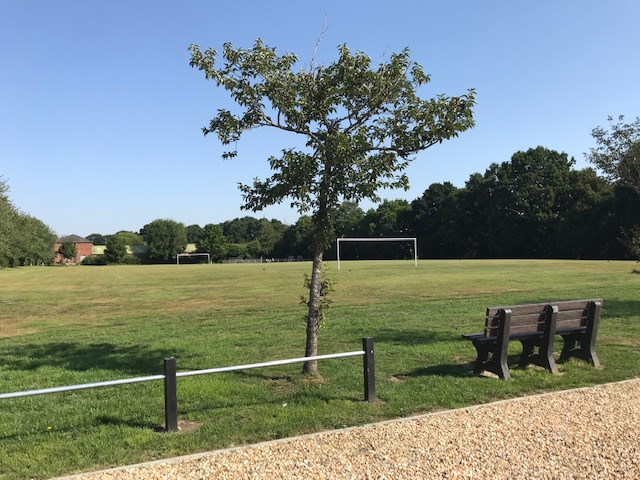 outdoor football pitch